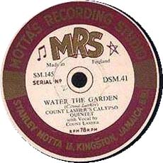 waterthegarden1