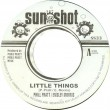 Hemsley Morris & Phill Pratt - Little Things