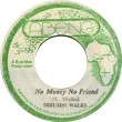 Shelton Walks - No Money, No Friend