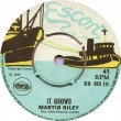 ES823A Martin Riley – It Grows