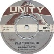 The Reggae Boys - What You Gonna Do