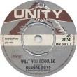 The Reggae Boys - What You Gonna Do