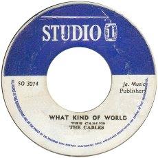whatkindofworld1